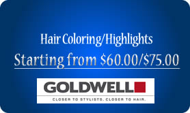Hair Coloring/Highlights from $60.00/$75.00